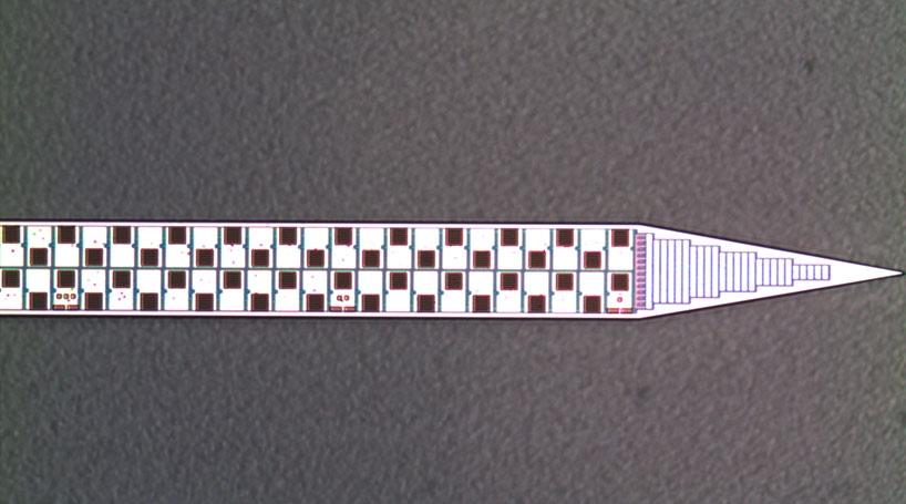Figure 1. The Neuropixels silicon neural probe with nearly 1000 recording sites. Image courtesy M. Barbic, HHMI Janelia.